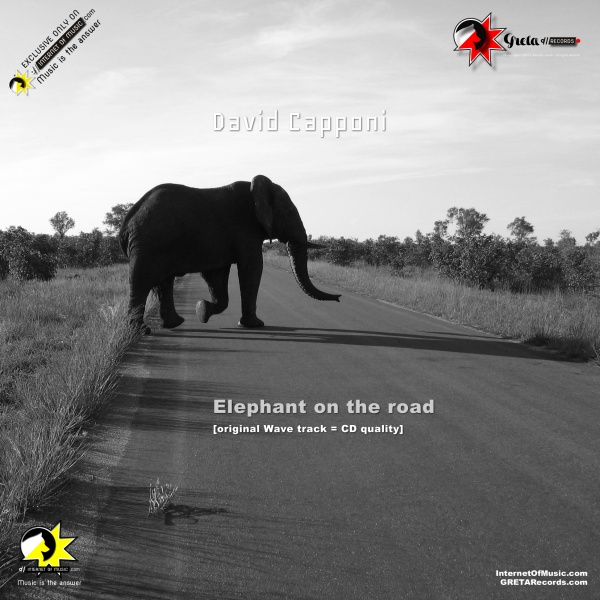 elephant-on-the-road, david capponi